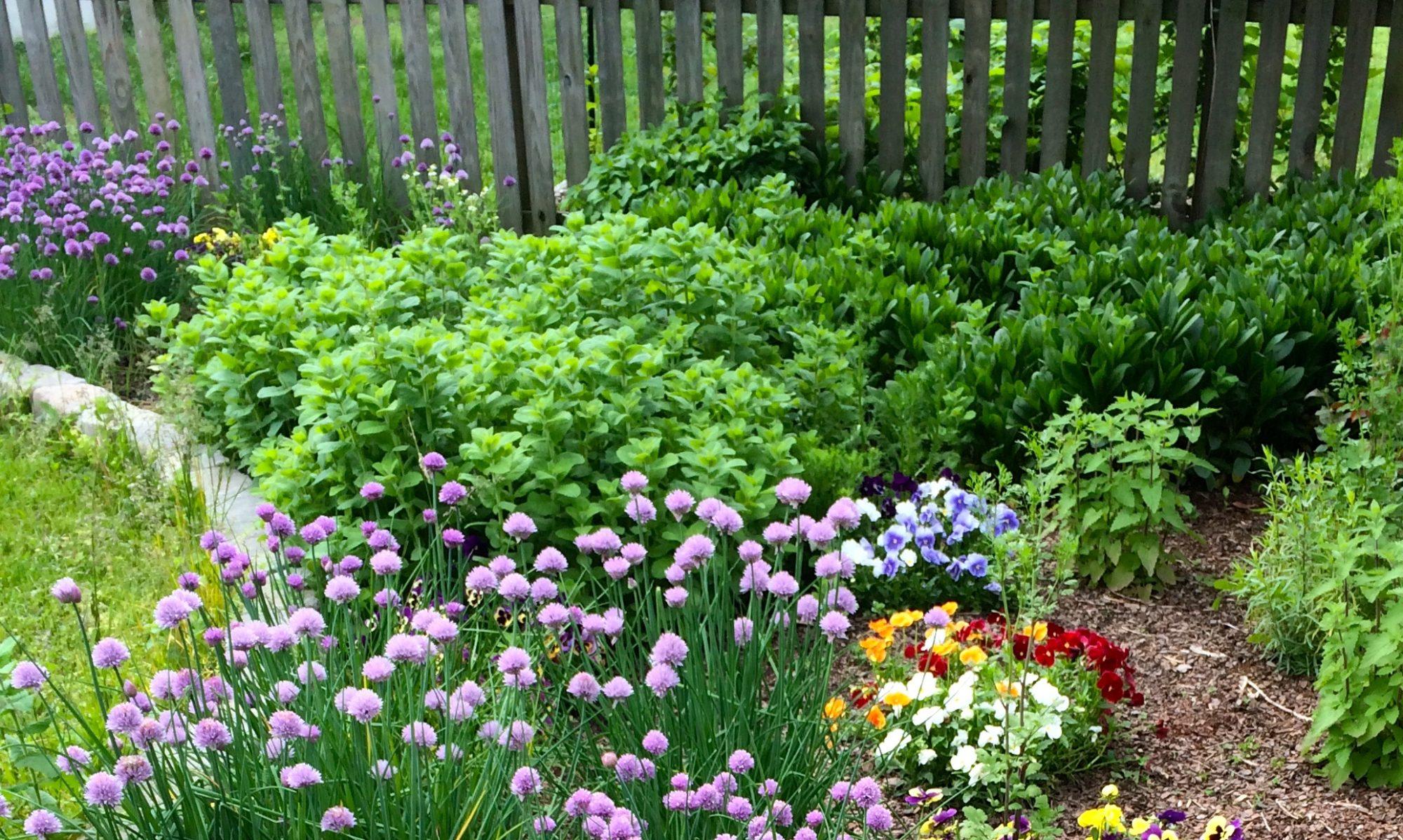 Garden and Garnish